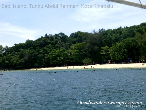 Sapi Island--a stretch of white sand beach with pine trees instead of coconuts!