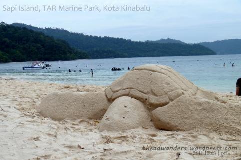 Biggest turtle...ever!