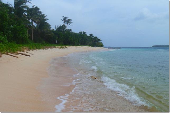 Tikling Island: palm-frond shoreline