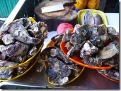 Capiz - Seafood Capital - Oyster