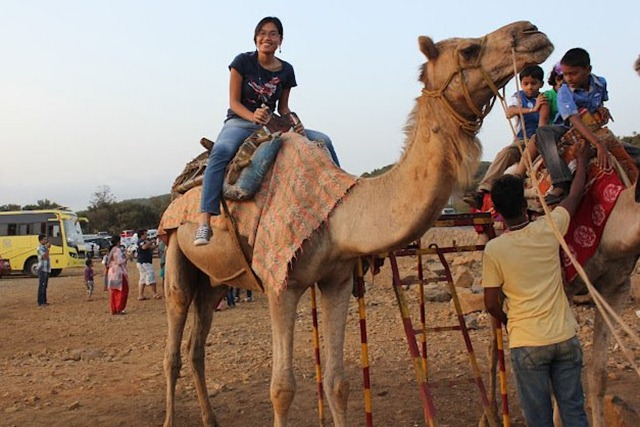 My 25th in Travel - May Camel Ride at Lonavala