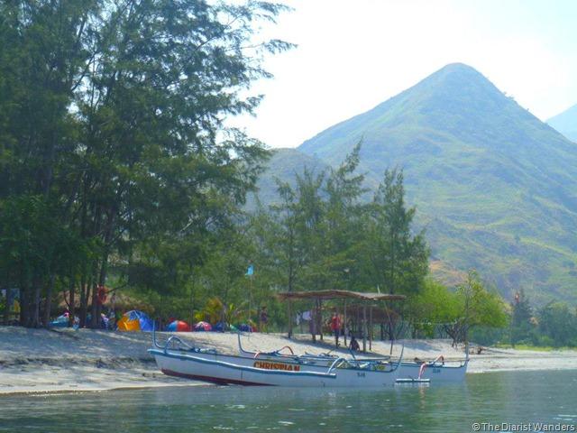 Nagsasa - Docked Boats and Pinewood Forest