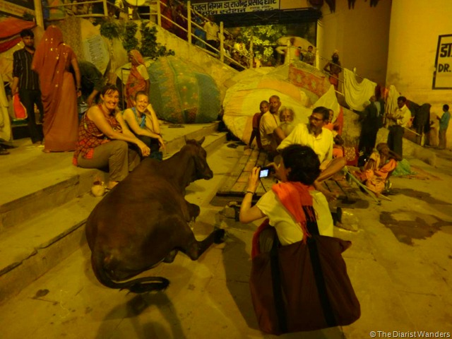 Varanasi Puja - Tourists and the Holy Cow
