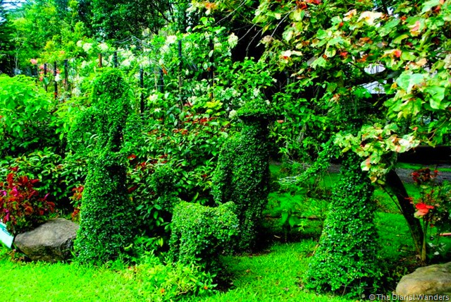 Family Topiary
